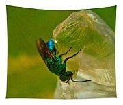 Halicid Bee 20 Tapestry