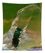 Halicid Bee11 Tapestry