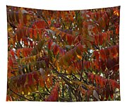 Hanging Out Clothes Tapestry