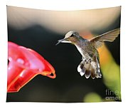 Happy Hummingbird Tapestry