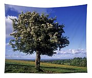 Hawthorn Tree On A Landscape, Ireland Tapestry