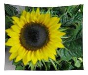 Helios Flower Tapestry