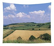 High Angle View Of Patchwork Fields Tapestry