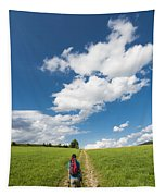 Hiking In The Summer Tapestry