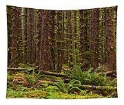 Hoh Rainforest Tapestry