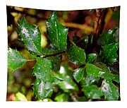 Holly Daze Dew Drops Tapestry