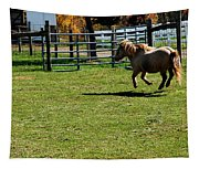 Horse Jump Tapestry