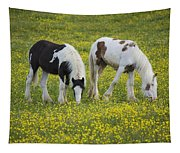 Horses Grazing, County Tyrone, Ireland Tapestry