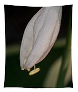 Host Blossom With Anther Protuding Tapestry