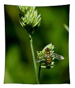 Hoverfly On Grass Tapestry