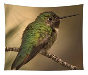 Humming Bird On Branch Tapestry