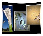 Hummingbird Collage 2009 Tapestry