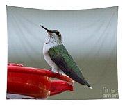 Hummingbird Tapestry