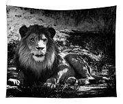 Hungry Lion Tapestry