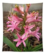 Hyacinth Named Pink Pearl Tapestry