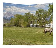 Hygiene Colorado Boulder County Scenic View Tapestry