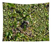 Iguana Hiding In The Bushes Tapestry