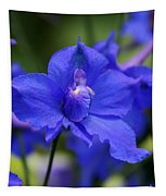 In A Blue Mood Tapestry