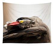 Inca Tern Tapestry