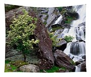 Inchquinn Waterfall, Beara Peninsula Tapestry