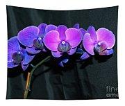Indigo Mystique Orchids  Tapestry