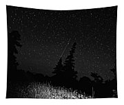 Into The Night Monochrome Tapestry