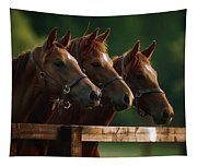 Ireland Thoroughbred Horses Tapestry