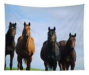 Ireland Thoroughbred Yearlings Tapestry
