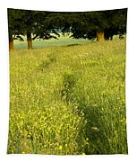 Ireland Trail Through Buttercup Meadow Tapestry