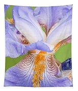 Iris Full Bloom Tapestry