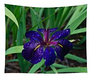 Iris With Rain Drops Tapestry