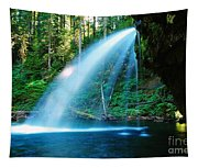 Iron Creek Falls From The Side  Tapestry