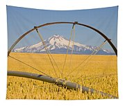 Irrigation Pipe In Wheat Field With Tapestry