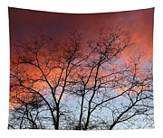 January Sunset Silhouette Tapestry