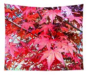 Japanese Maple Leaves 11 In The Fall Tapestry