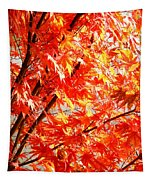 Japanese Maple Leaves 12 In The Fall Tapestry