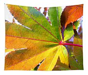 Japanese Maple Leaves 7 In The Fall Tapestry
