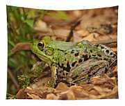 Just A Frog Tapestry
