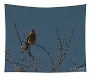 Kestrel  Tapestry