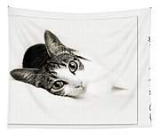 Kitty Cat Greeting Card I Miss You Tapestry