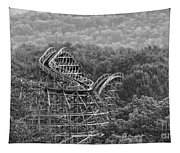 Knobels Wooden Roller Coaster Black And White Tapestry