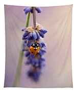 Ladybird And Lavender Tapestry
