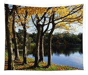 Lake And Trees, Mount Stewart, Co Down Tapestry