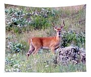 Lake Country Buck Tapestry