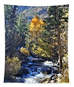 Lake Sabrina Creek Tapestry