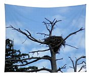 Lake Tahoe Eagle Nest Tapestry