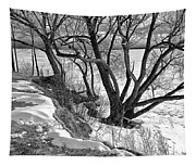 Lakeshore  Tapestry