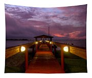 Landing Lights Tapestry