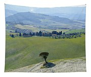 Landscape View Tapestry