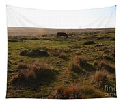 Landscape With Cow Grazing In The Field . 7d9935 Tapestry